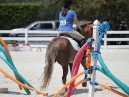 PHA-obstacles-april2019-IMG_0739